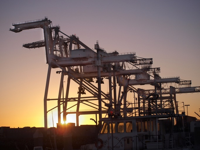 multiple cranes at sunset
