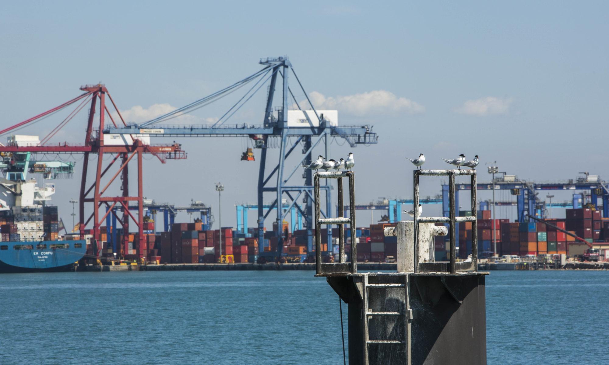 valenciaport smart port of Valencia