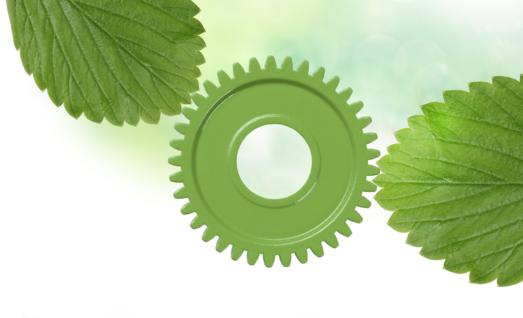 Leaves and green gear with copy space.