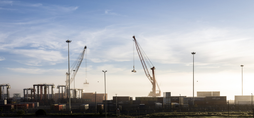 Cranes and containers stand still in commercial docks during COVID-19 travel ban